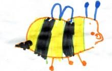 L'ape di Shaka